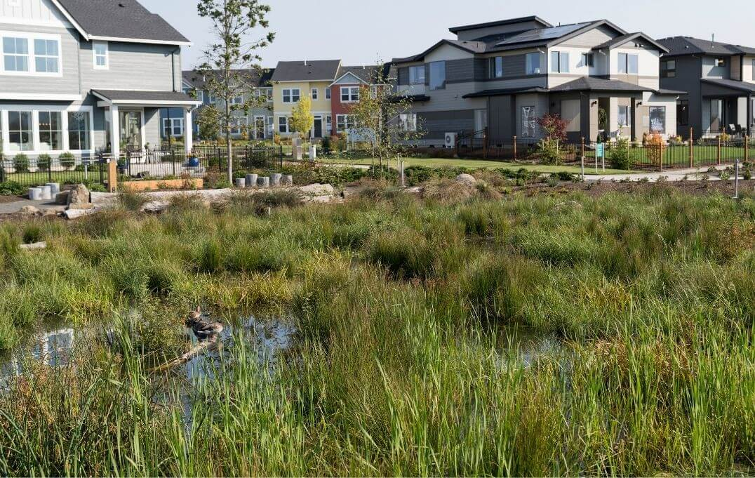 Sustainability in Reed's Crossing Community South Hillsboro Oregon